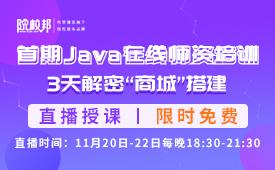 首期Java在线师资培训